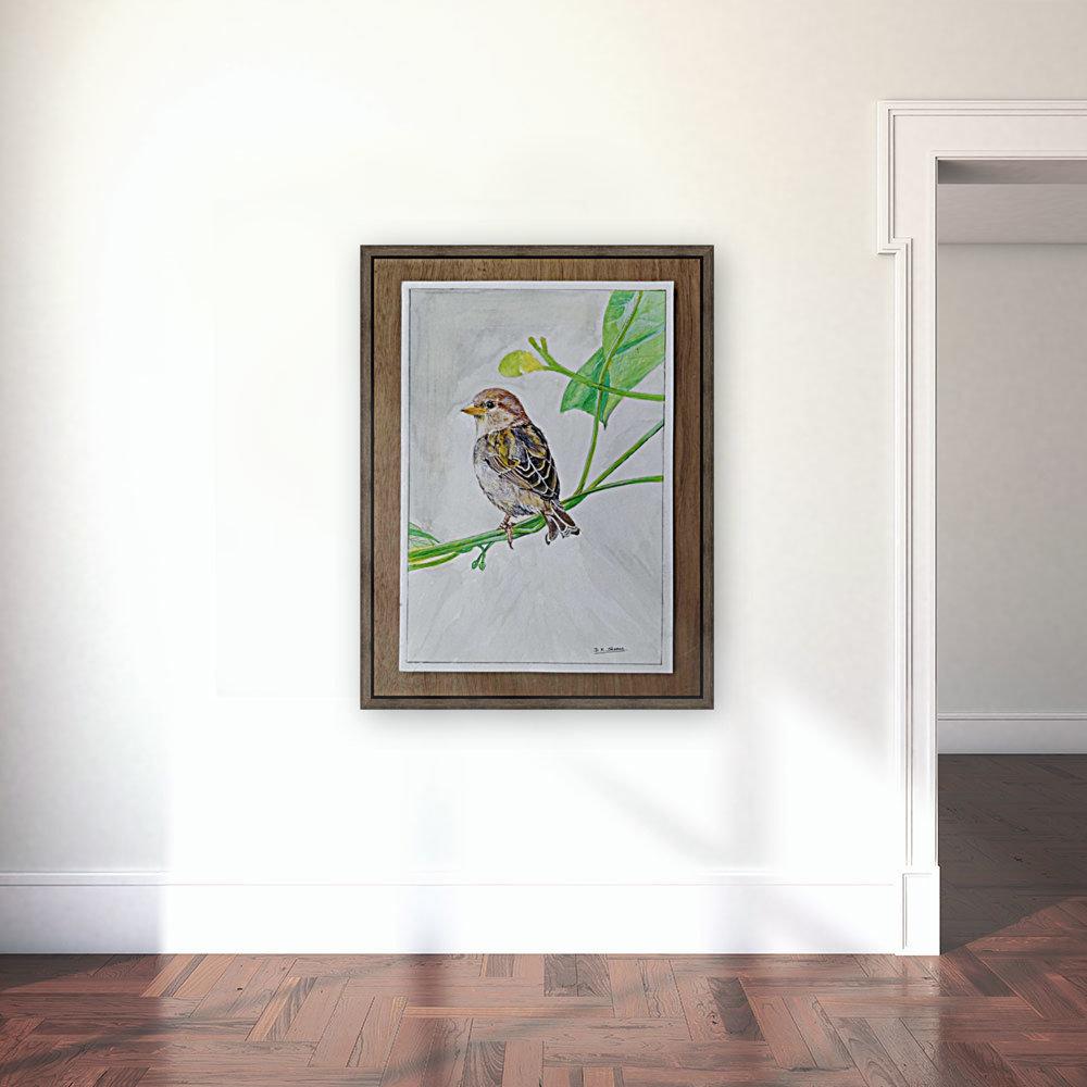 Sparrow_DKS  Art