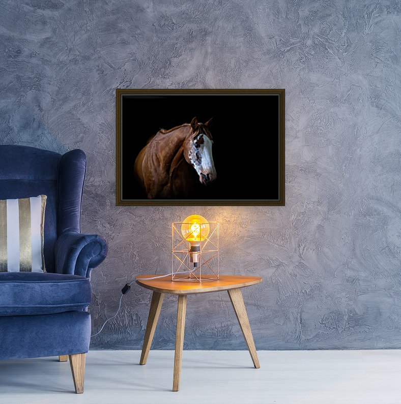 Studio Horses with Floating Frame