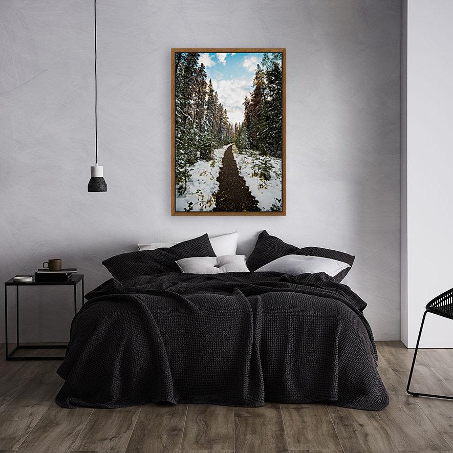 Winter Path  Art