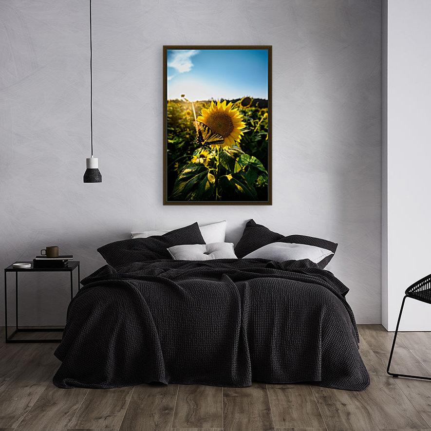 Sunflower Love  Art