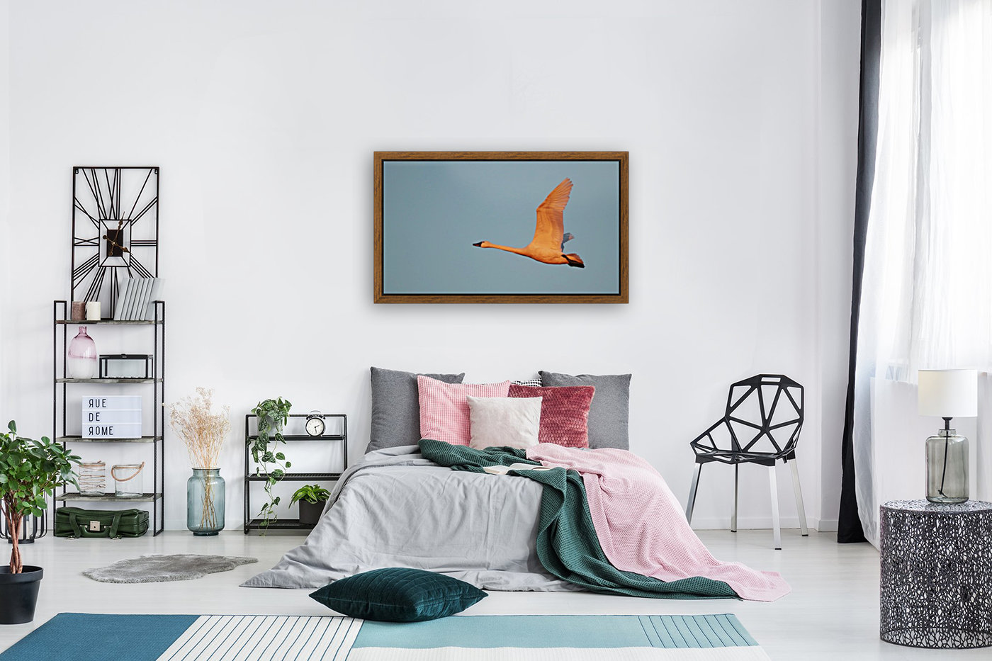 Tundra Swan with Floating Frame