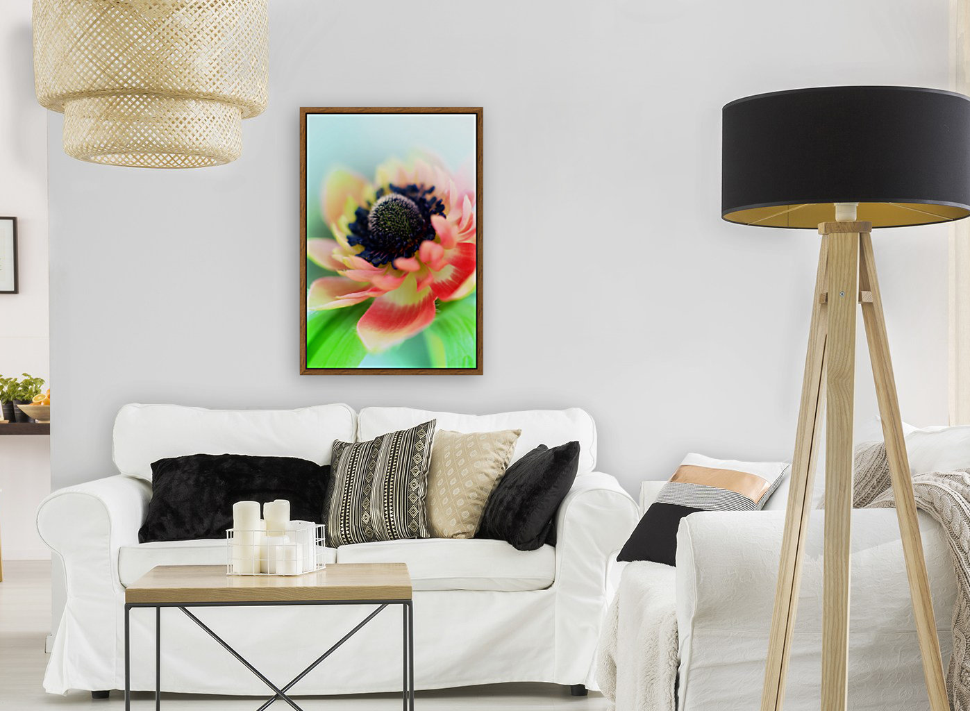 Anemone de Caen with Floating Frame