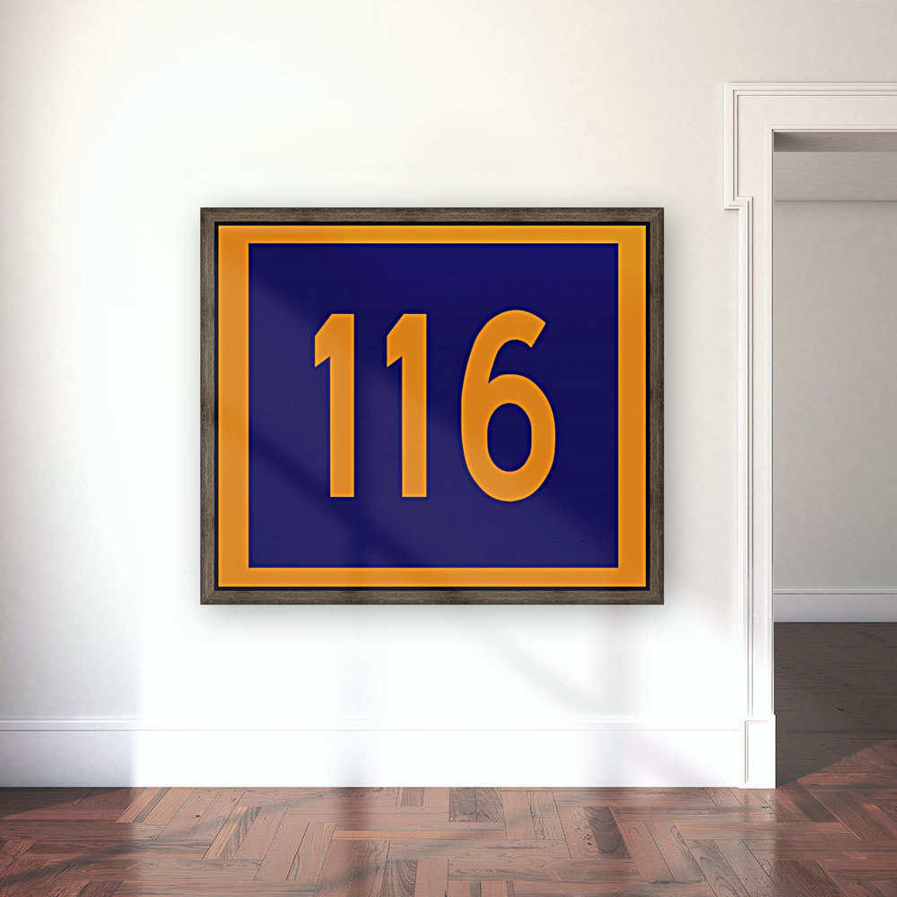 Number 116 with Floating Frame