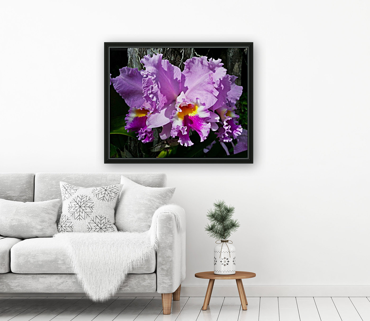 Frilly Orchid  Art