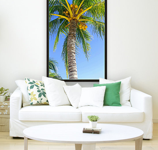 Palm Tree and Coconuts  Art