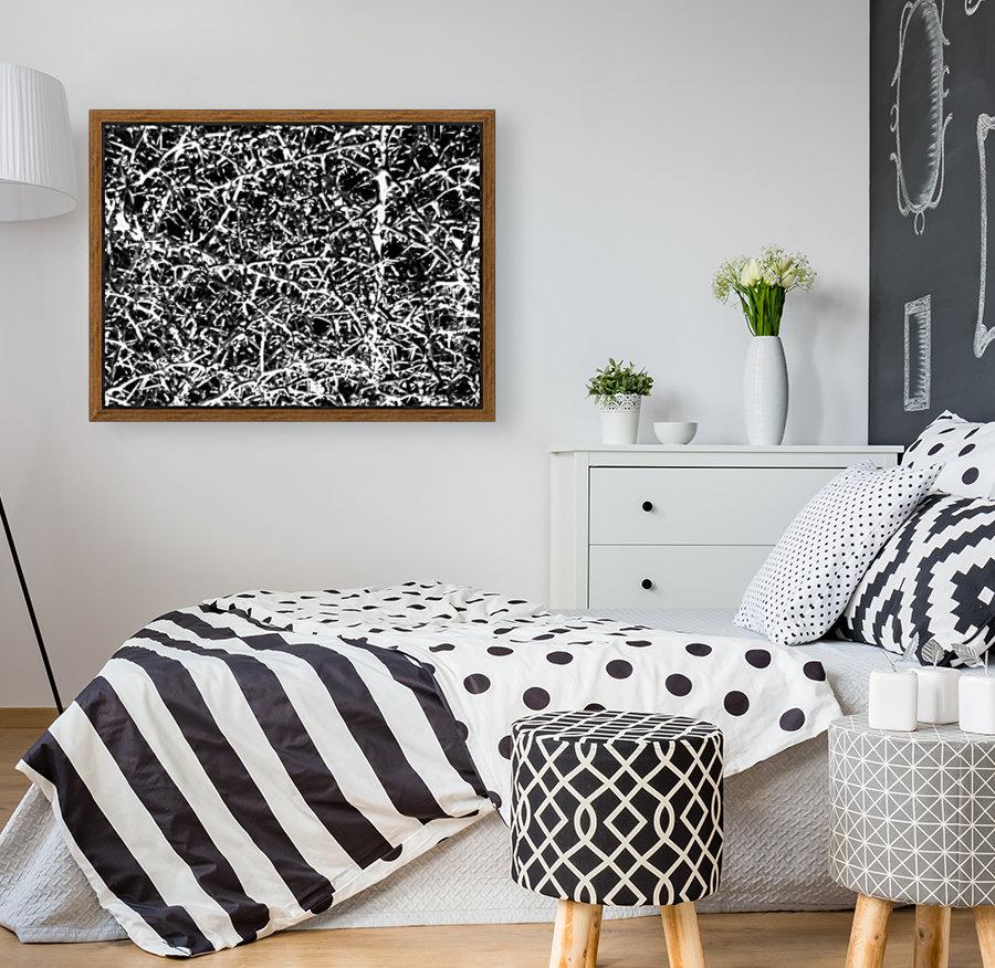 Black & White Nature  Art