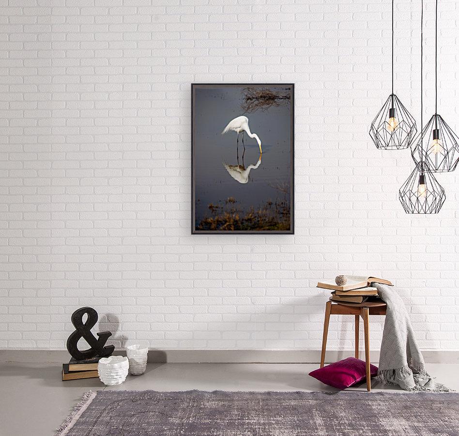 The Kiss White Egret  Art