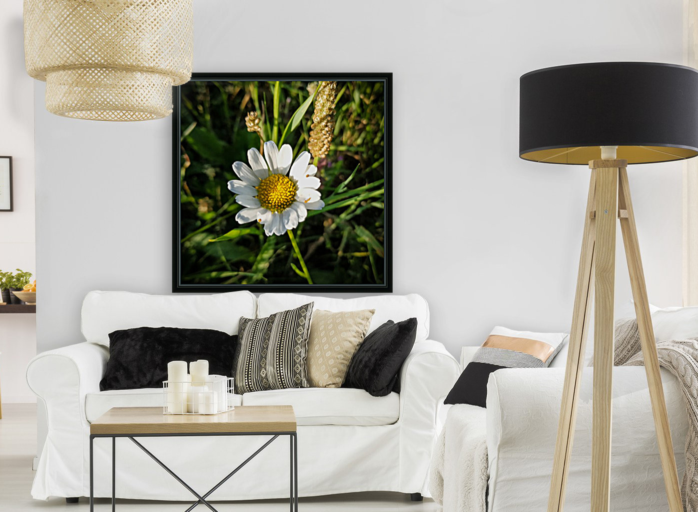 Little daisy in grass with Floating Frame