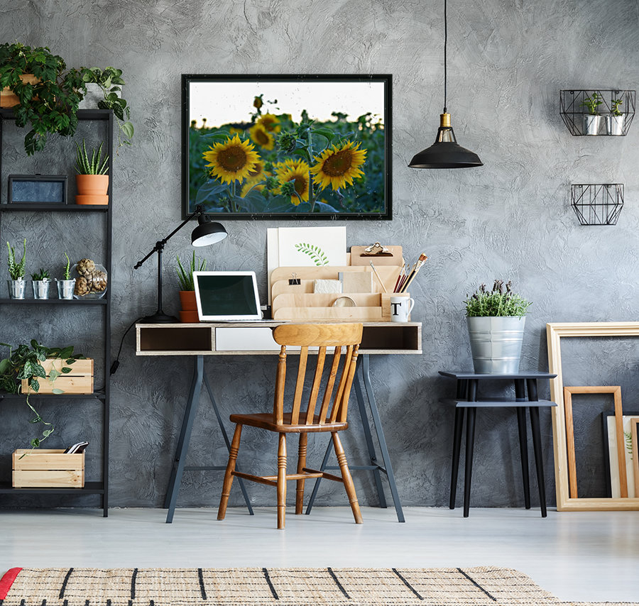 Sunflower Family  Art