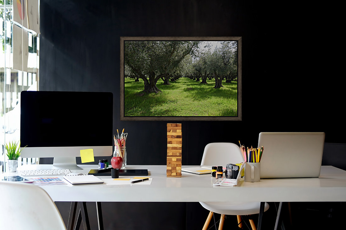 Olive Orchard In Spring  Art