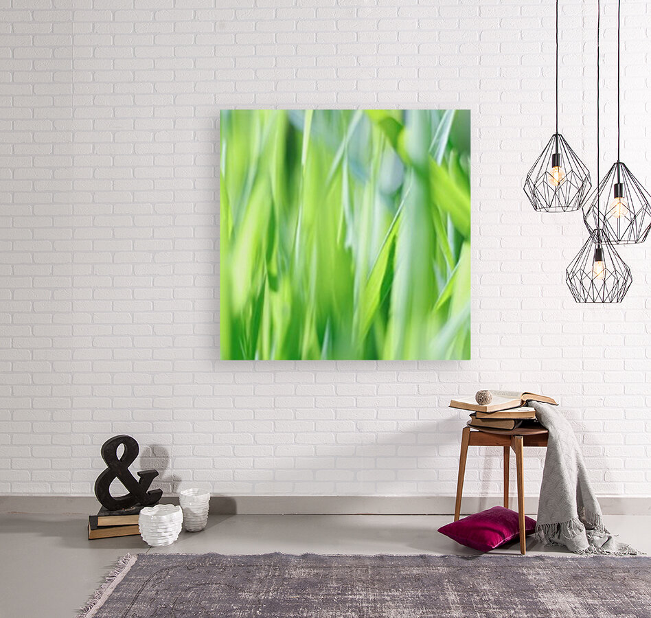 Blueish Green Grass with Floating Frame
