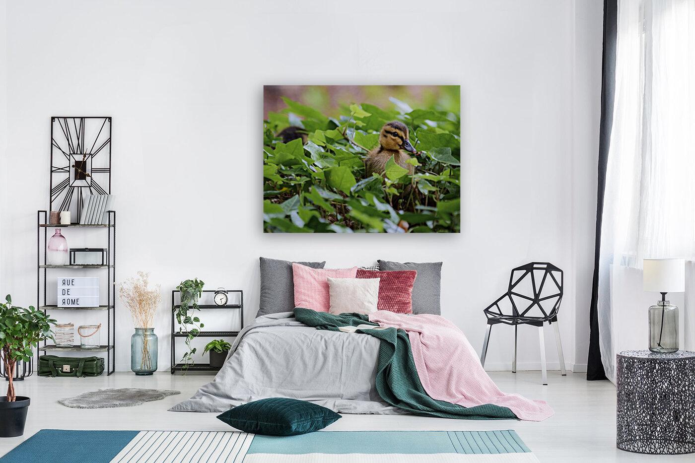 Duck In Plants  Art
