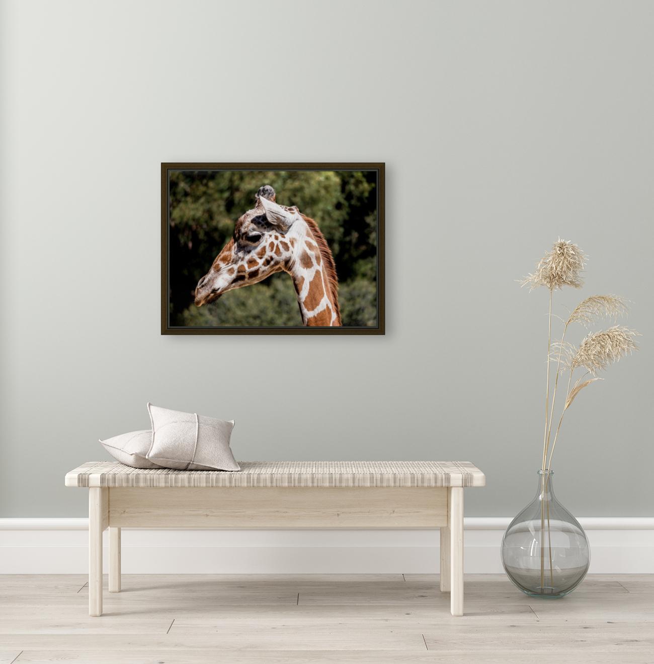 Profile of a Giraffe  Art