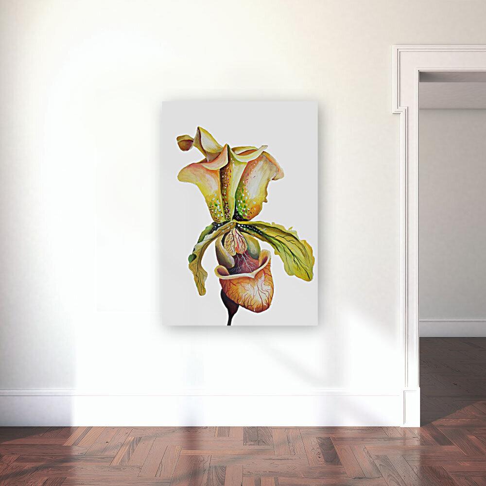 Blooming Paphiopedilum Orchids  Art