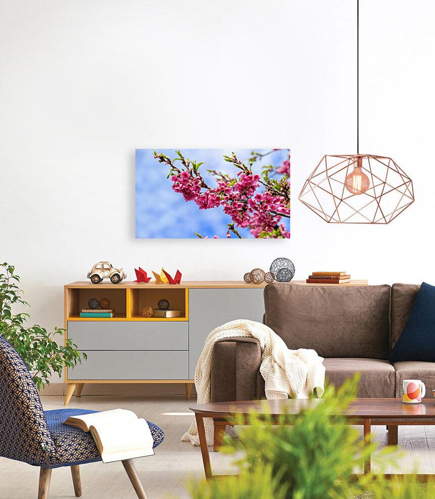 Tree XIII - Cherry tree  Art