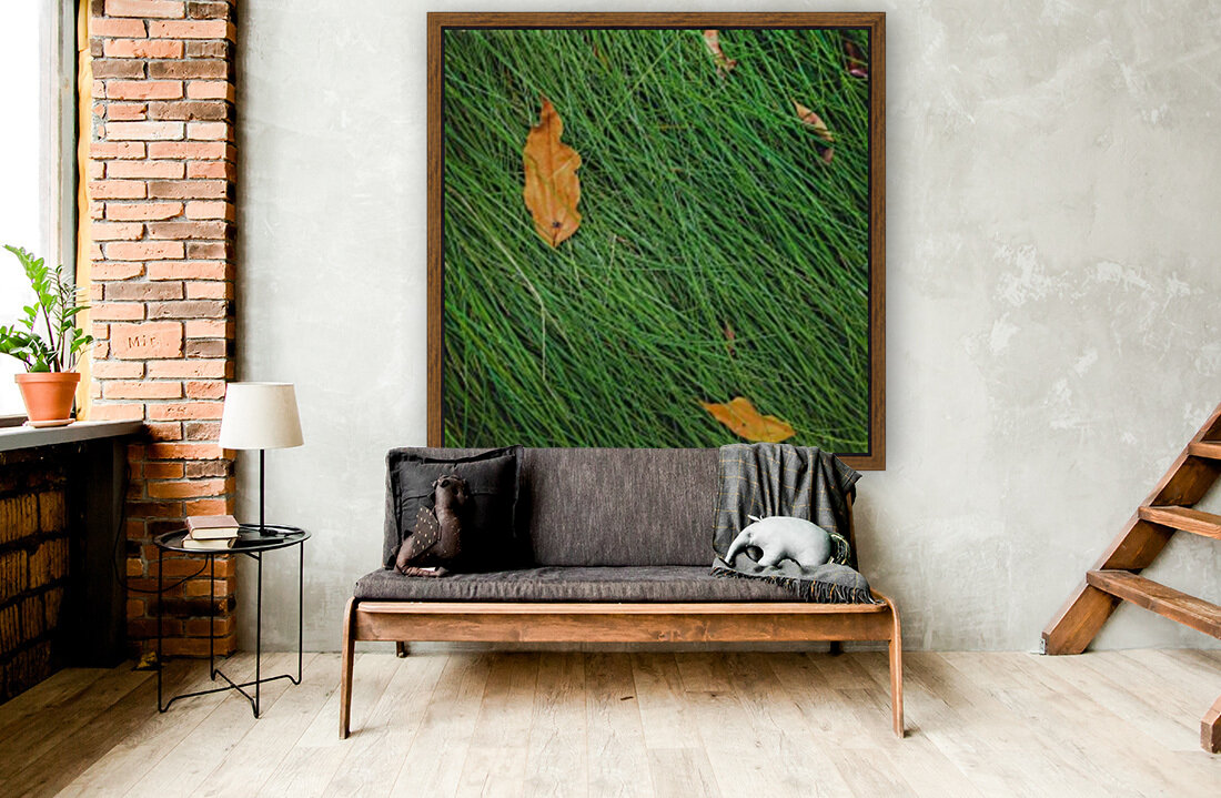 green grass field background with dry brown leaves  Art