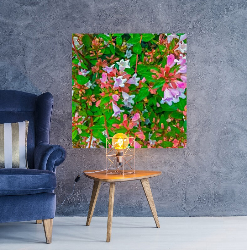 closeup blooming pink flowers with green leaves  Art