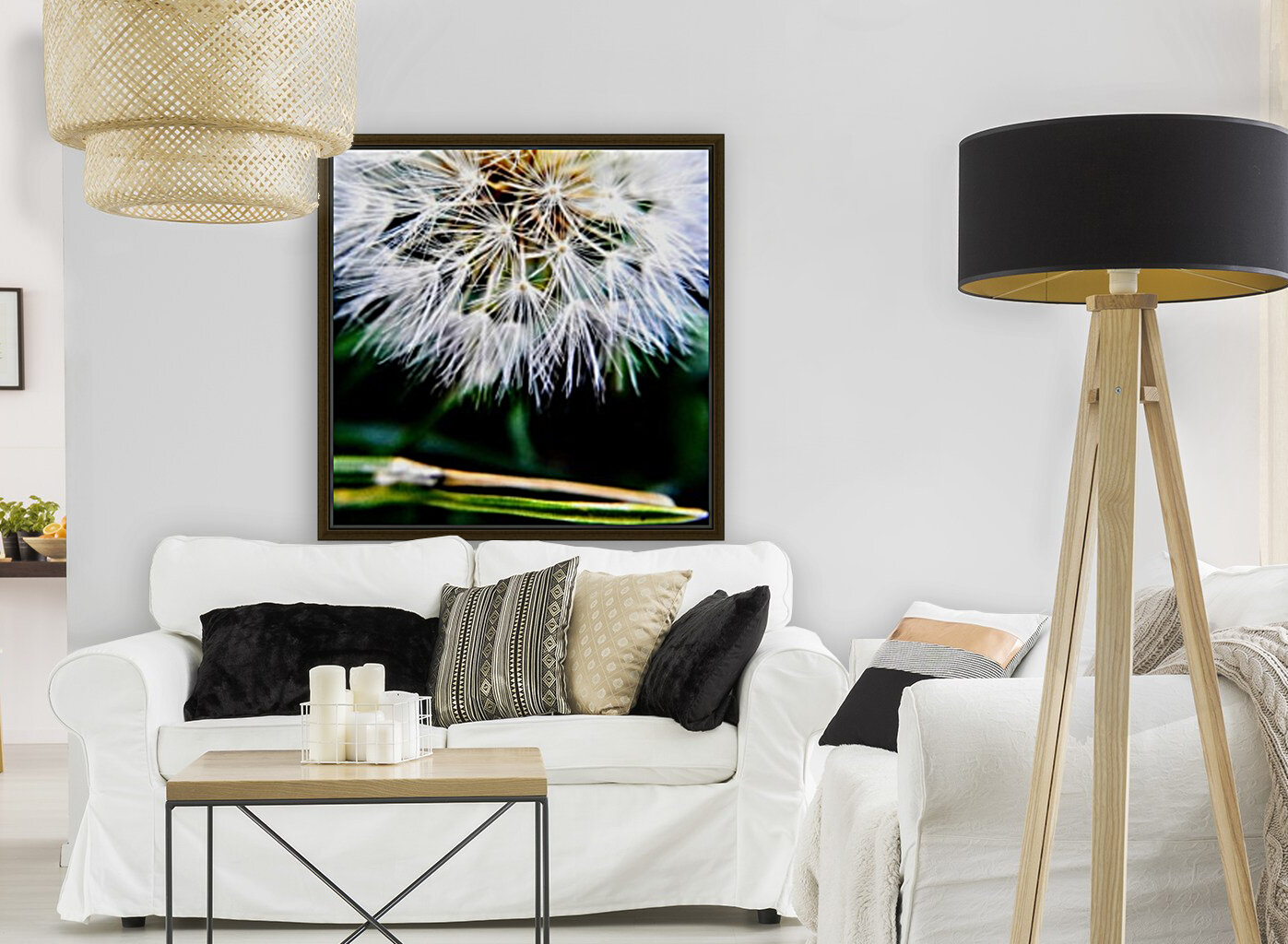 Dandelion Fluff with Floating Frame