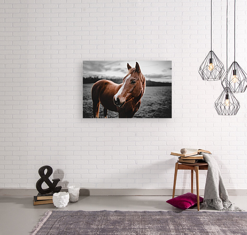 Shining Horse with Floating Frame