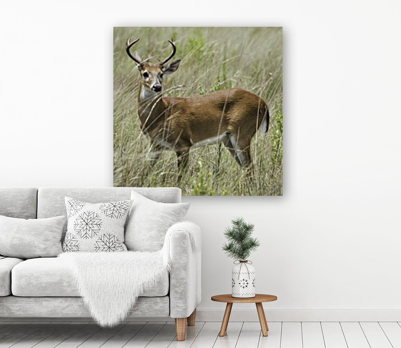 White Tailed Dear with Floating Frame
