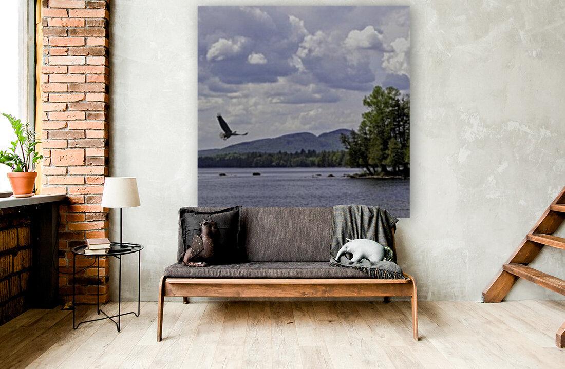 Eagle on Lake  Art