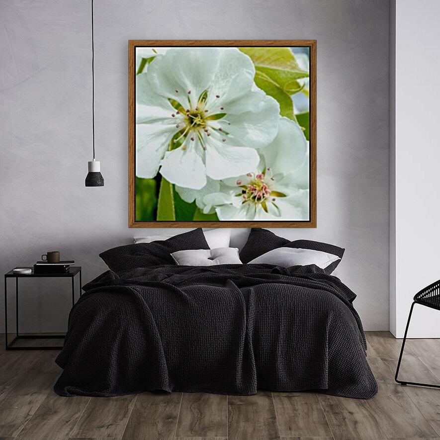 Pear Blossom - No. 1  Art