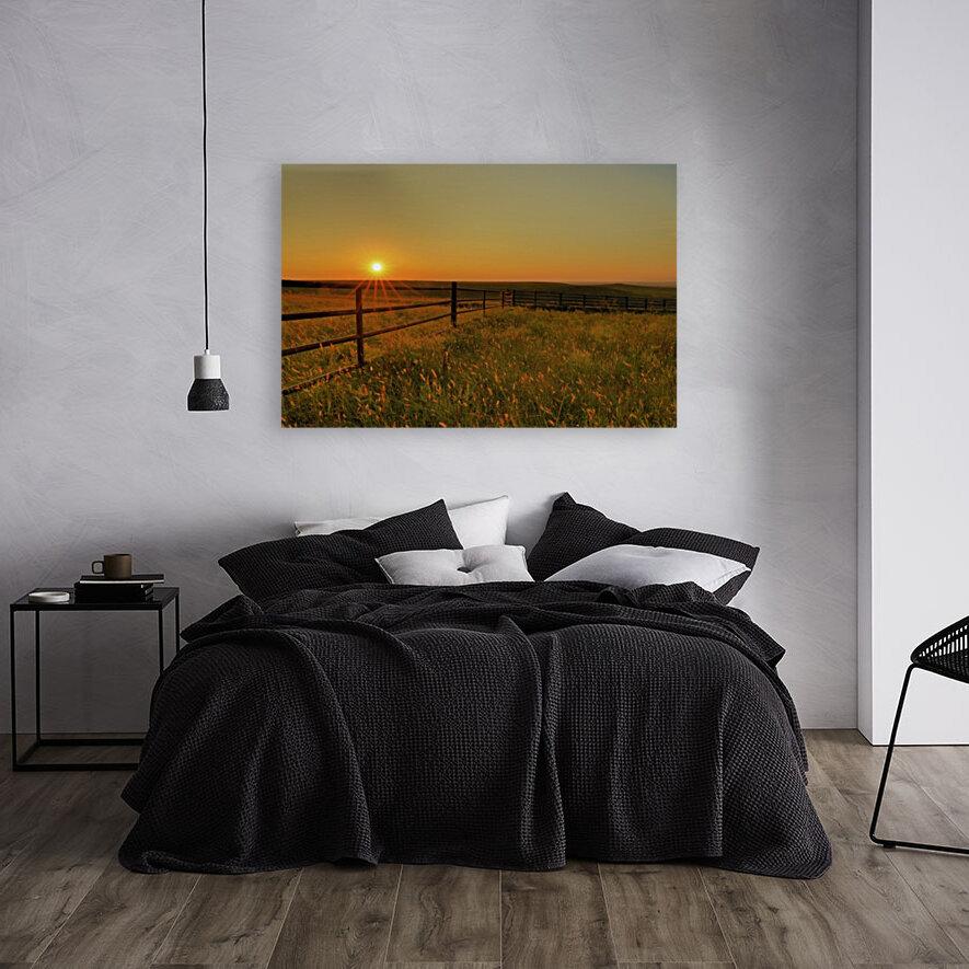 Cattle Pens Morning Sunburst  Art