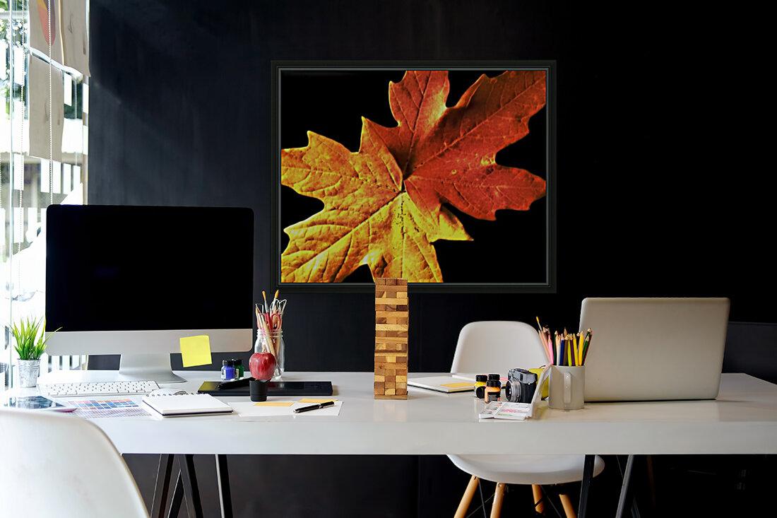 Fall Maple Leaves 3  Art