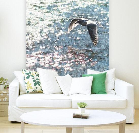 Sparkling Gull   Art