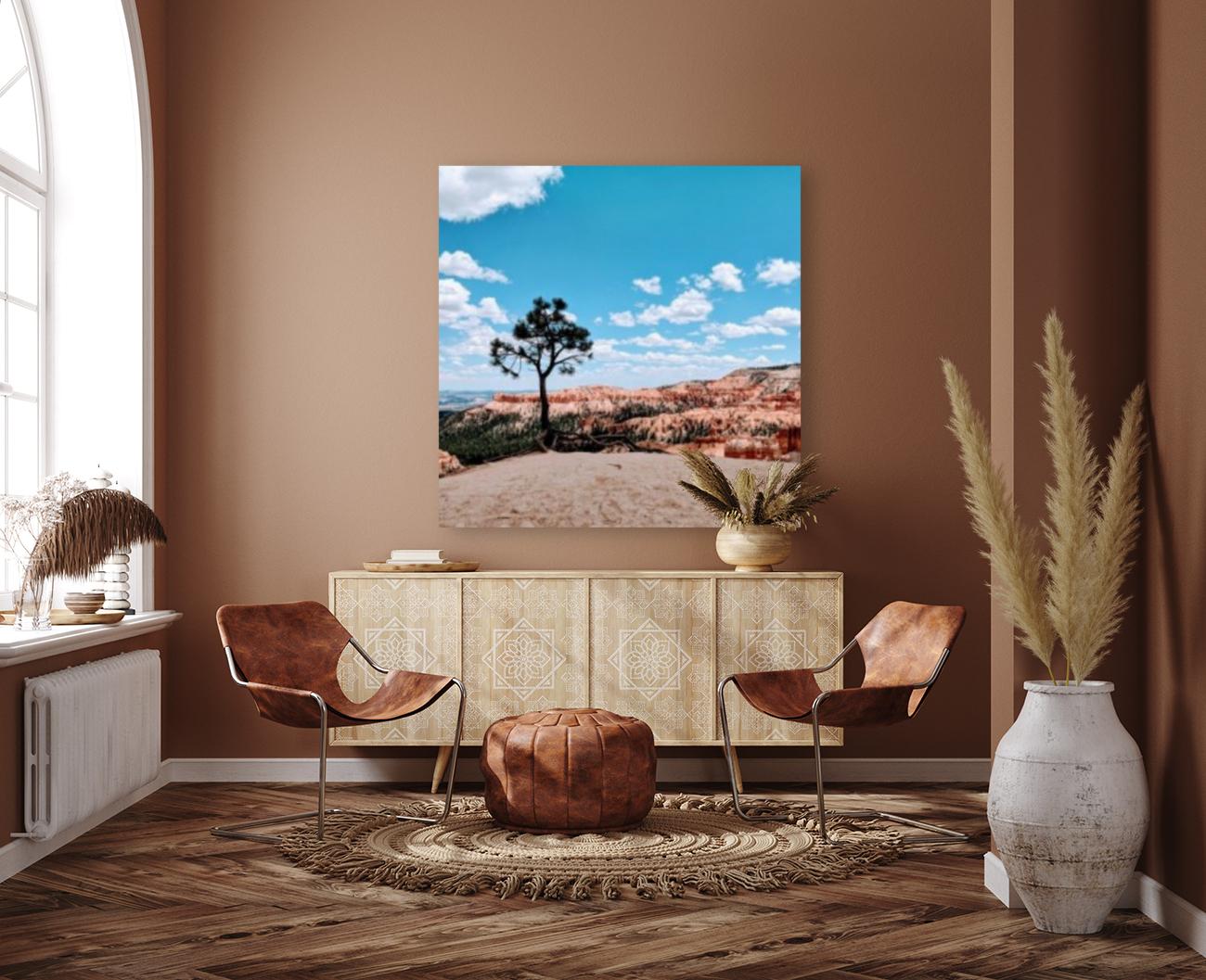 Bryce Canyon V  Art