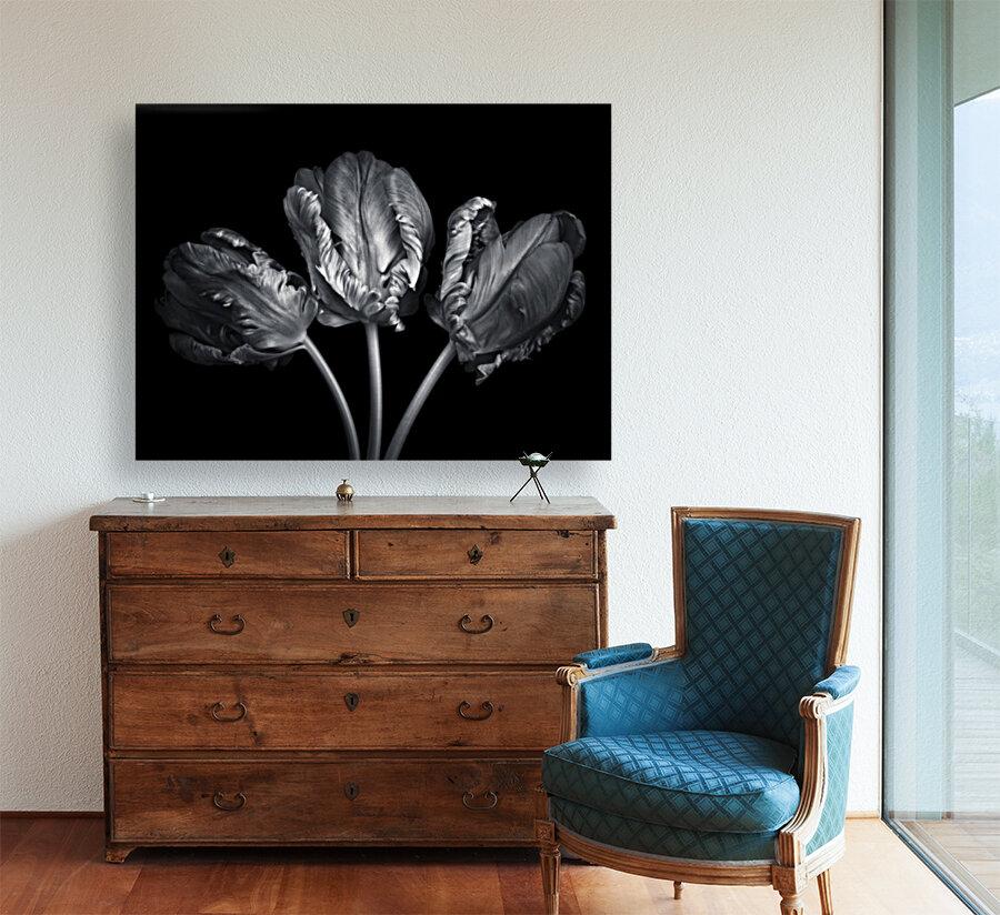 Three rococo tulips close-up  Art