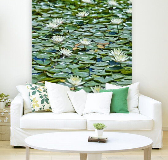 Water Lilies with Floating Frame