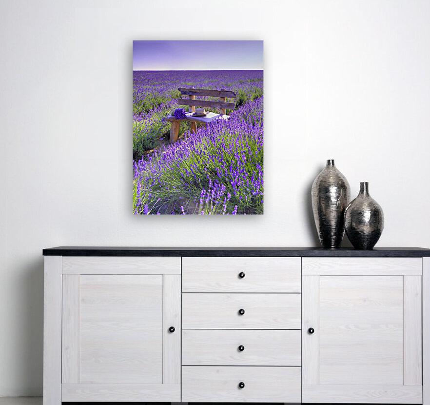 Bench in Lavender field  Art