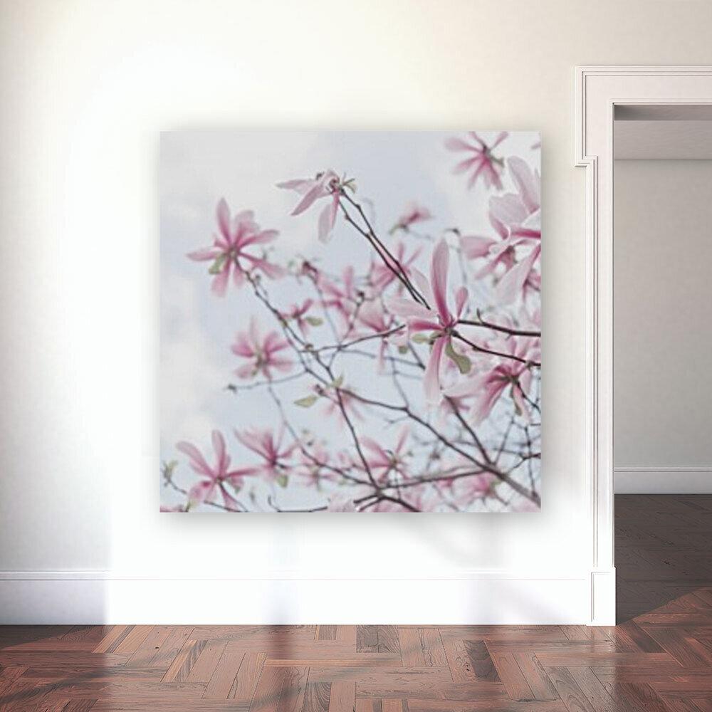 Magnolias against sky  Art