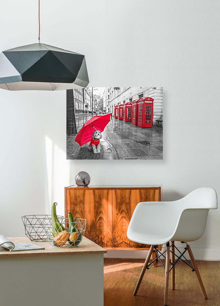 Dog with umbrella on London city street  Art