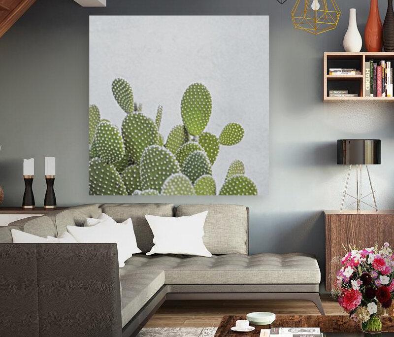 Cactus plant  Art