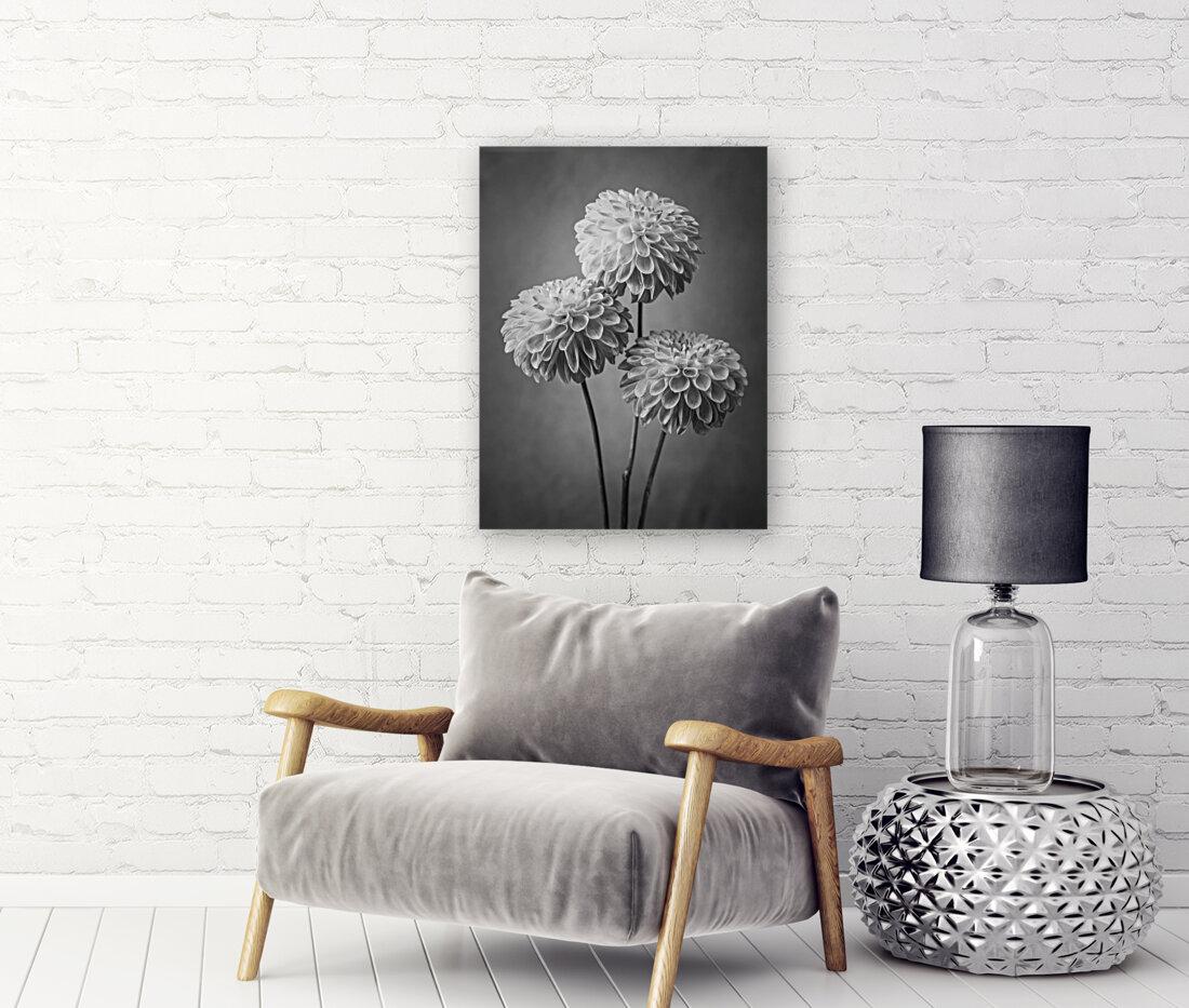 Three Dahlia flowers  Art