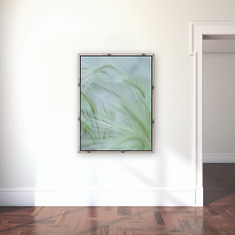 Wild grass Foxtail Barley  Art