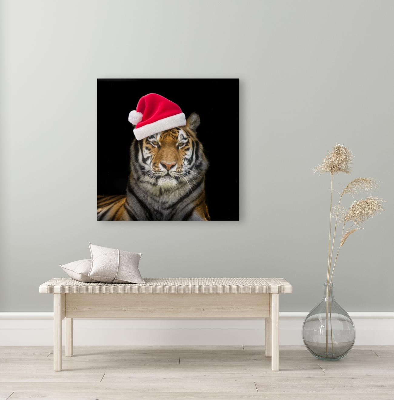 Tiger with Santa hat  Art