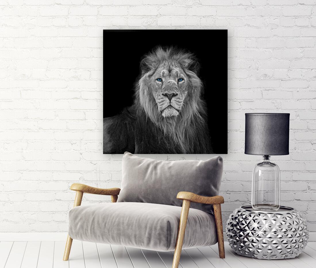 Lion face  Art