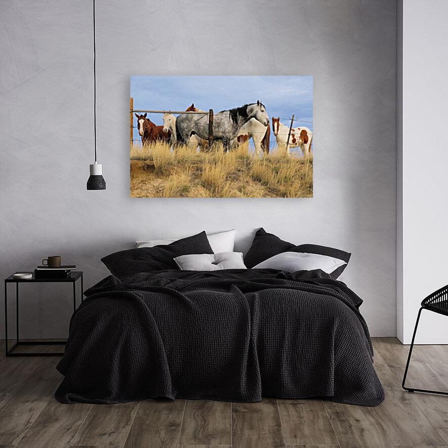 Little Bighorn Ponies  Art