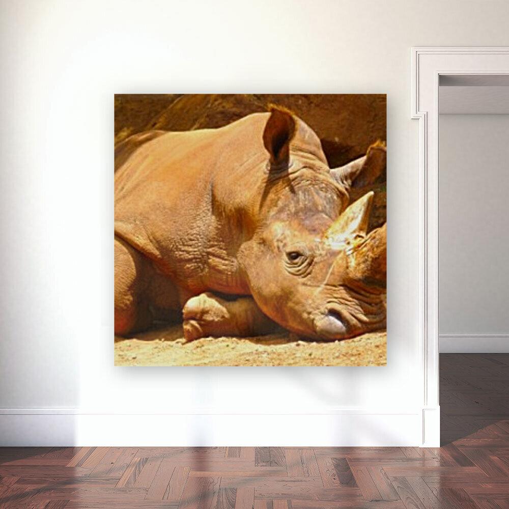 Rhino - Natural World Kids Gallery  Art