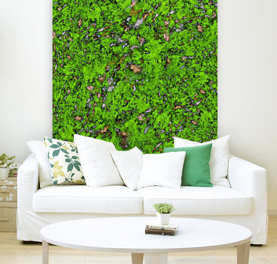 Big mossy wall with Floating Frame