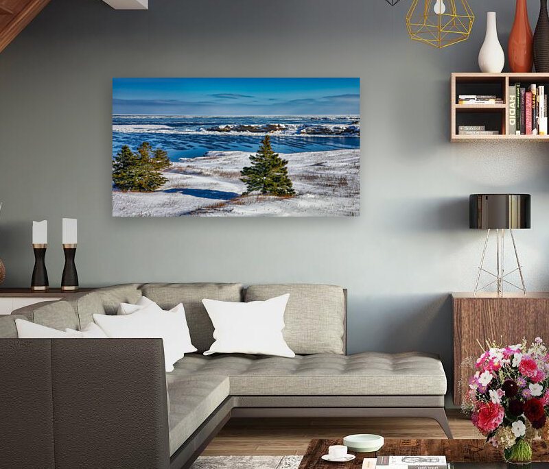 Pointe Saint-Pierre et lIle Plate  Art