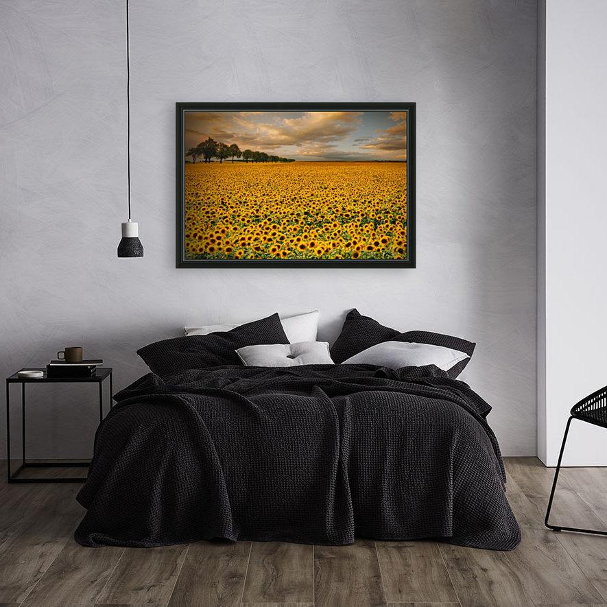 Sunflowers  Art