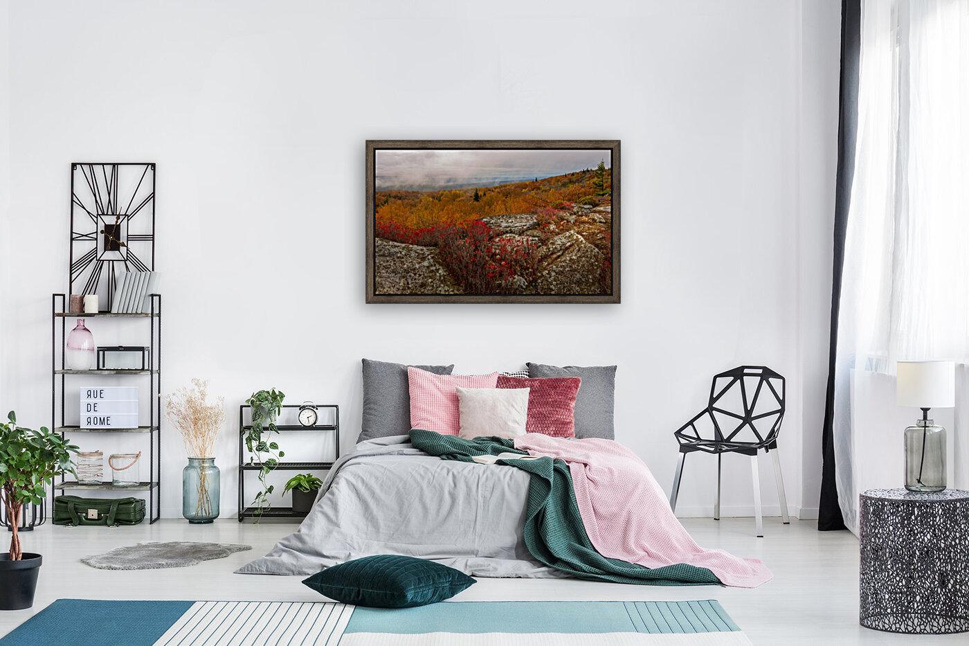 Colors of Nature apmi 1795  Art