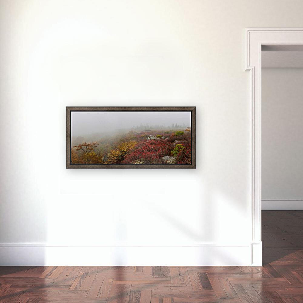 Hurricane Delta apmi 1800  Art