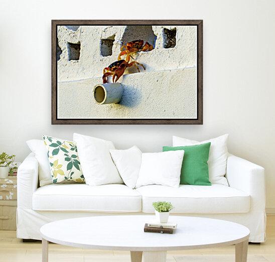 Cayman Crabs  Art