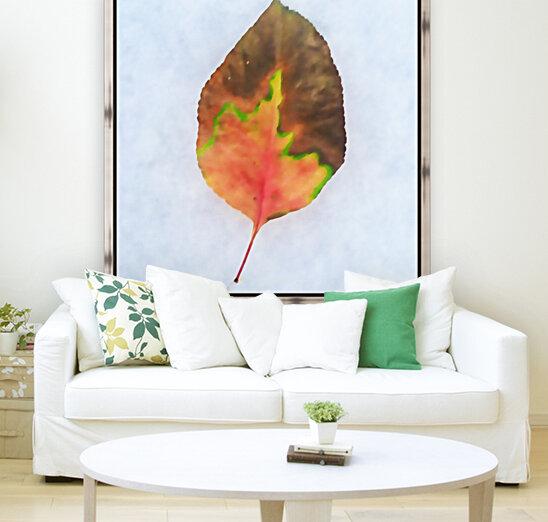 snow leaf  Art