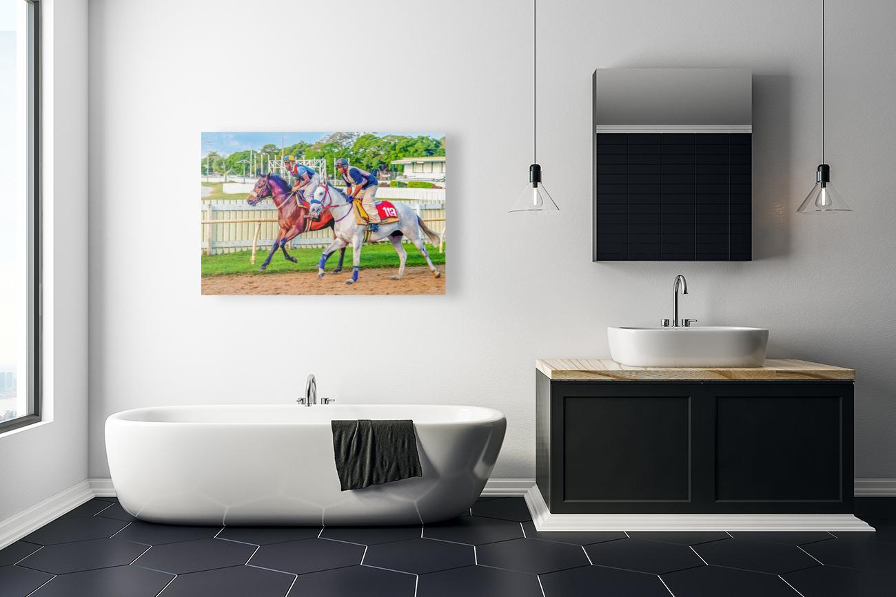 Racehorse08  Art
